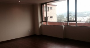 Brand new 3 bedroom condo for rent