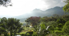 Beautiful Lots for Sale in Yunguilla