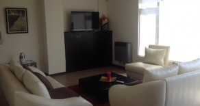 Amazing furnished condo for rent