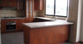 Upscale 3 bedroom condo for rent in the Palermo building