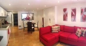 One bedroom luxury apartment in the heart of the City!